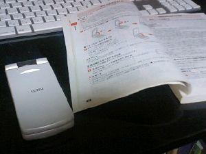 20080304_1.jpg