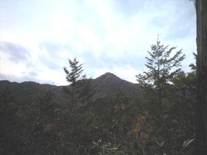 20081110_3.jpg