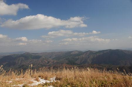 20081123_2.jpg