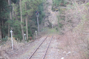 20081130_3.jpg