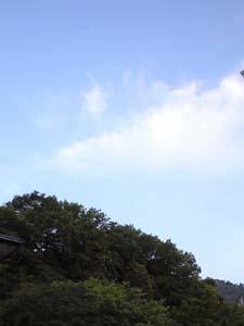20090510.jpg