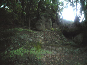 20090524.jpg