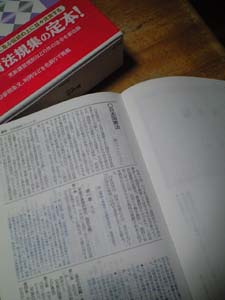 20090809_2.jpg