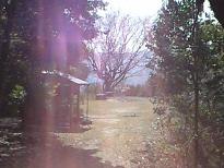 20100326_2.JPG
