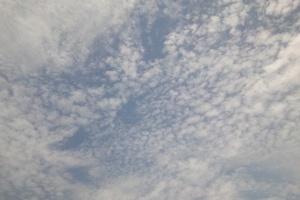 20110525_2.JPG