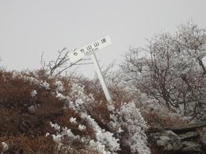 20141115_02.JPG