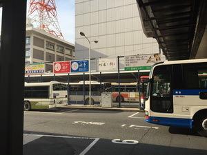 IMG_9176.JPG